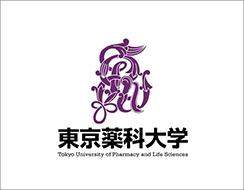東京薬科大学薬学部 医療実務薬 学教室川口崇先生